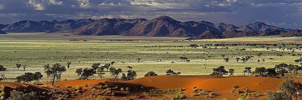 Parchi e Riserve del Kenya-Savana africana