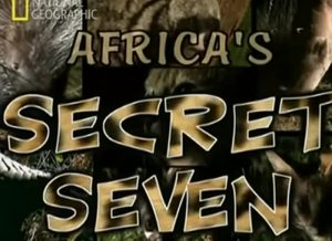 Africa-Sette animali segreti