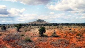 Parco Nazionale Tsavo Est-Vacanze Kenya