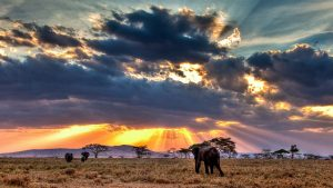 Clima in Kenya